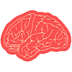 Dil ve Beyin