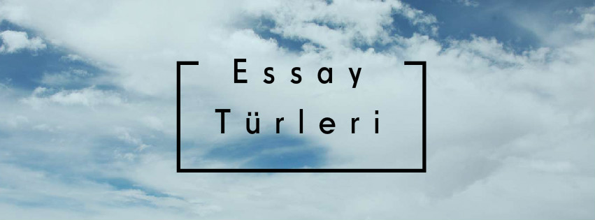 essay of exams butterfly in hindi