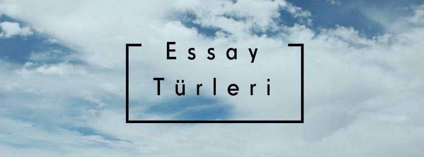 Essay türleri ve örnekleri