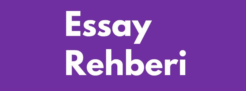 essay rehberi